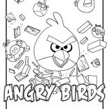 angbird10