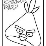 angbird9