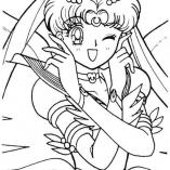 animeforg3