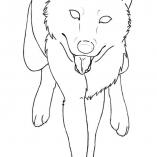 animewolf1