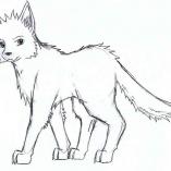 animewolf6