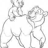 bears11