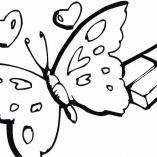butterflys6
