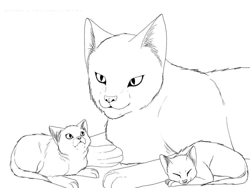 Скачать картинки котята милые