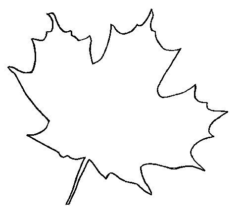 кленовый лист картинка:
