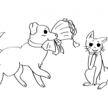 dogcats1