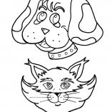 dogcats4