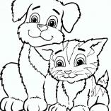 dogcats9