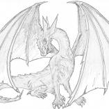 dragonkras5