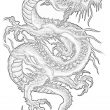 dragonkras7