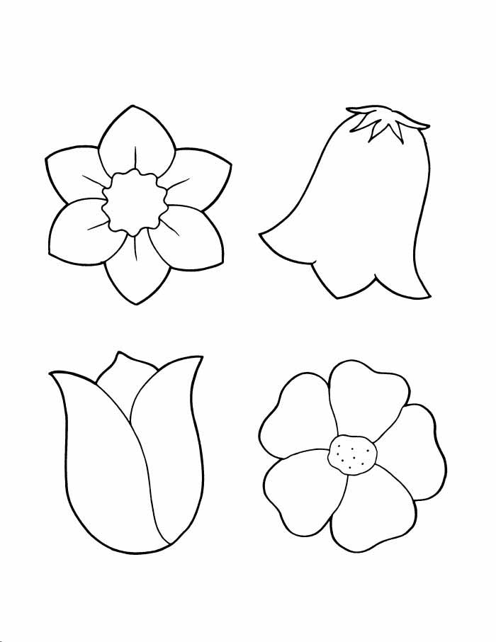 Картинки цветок раскраска для детей