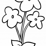 раскраска тройной цветок