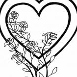 несколько цветов и сердце