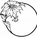 цветок и окружность
