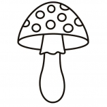 mushrooms6