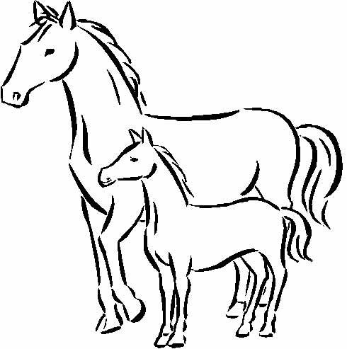 Раскраска барби и лошади
