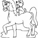 horse13