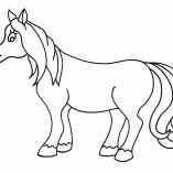 horse18