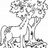 horse9