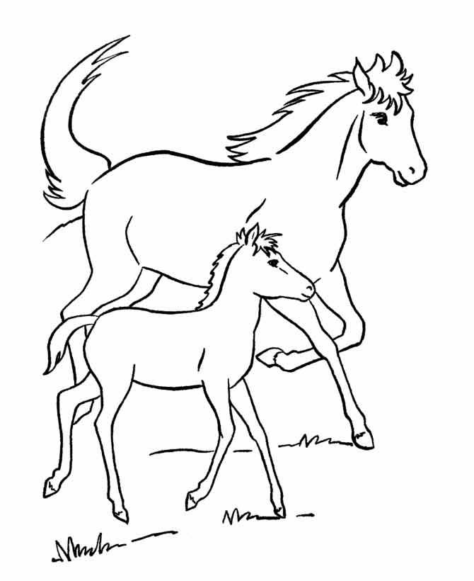 Распечатать раскраски бесплатно лошади