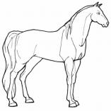 рисунок лошади раскраска
