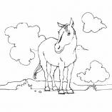раскраски животные лошади