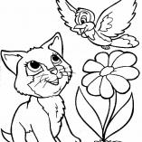 котенок и птичка