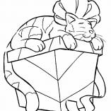 котенок на коробке с подарком
