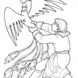 magbird1
