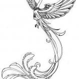 magbird4