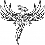 magbird5