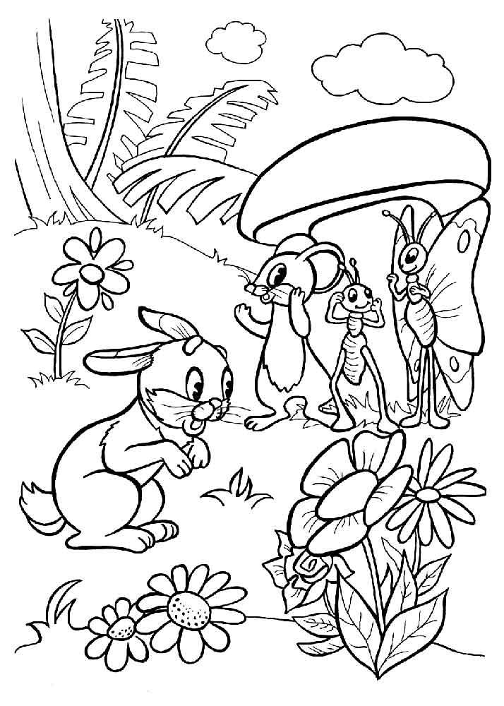 Раскраска грибы | Детские раскраски, распечатать, скачать