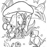 грибы картинки раскраски