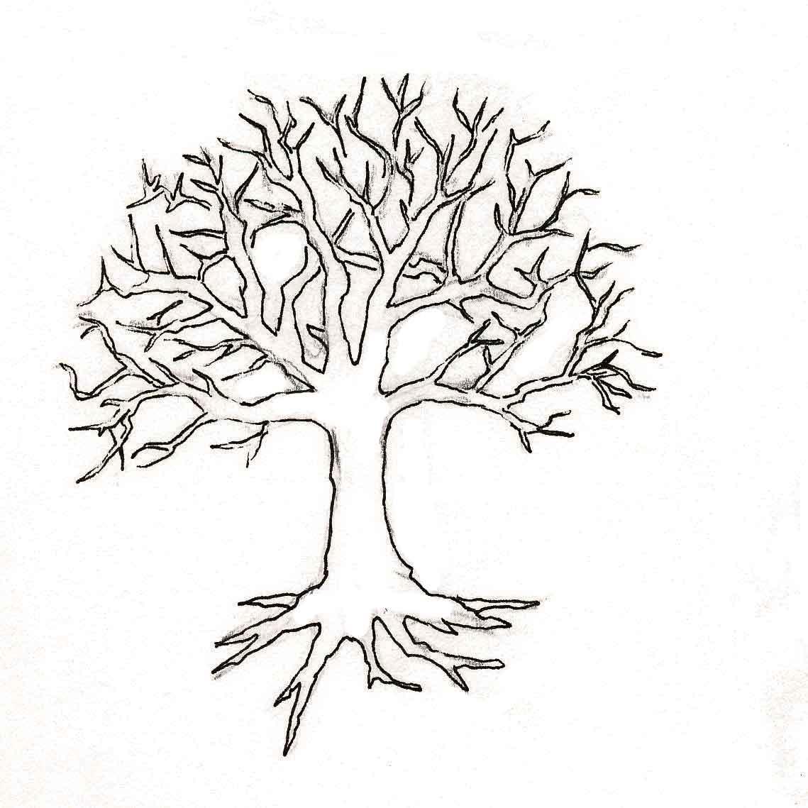 картинка ствола дерева без листьев