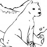 polarbear9