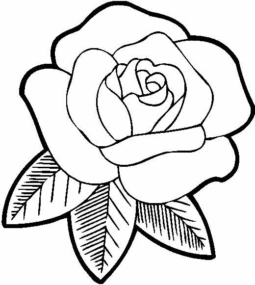 Раскраска розы печать