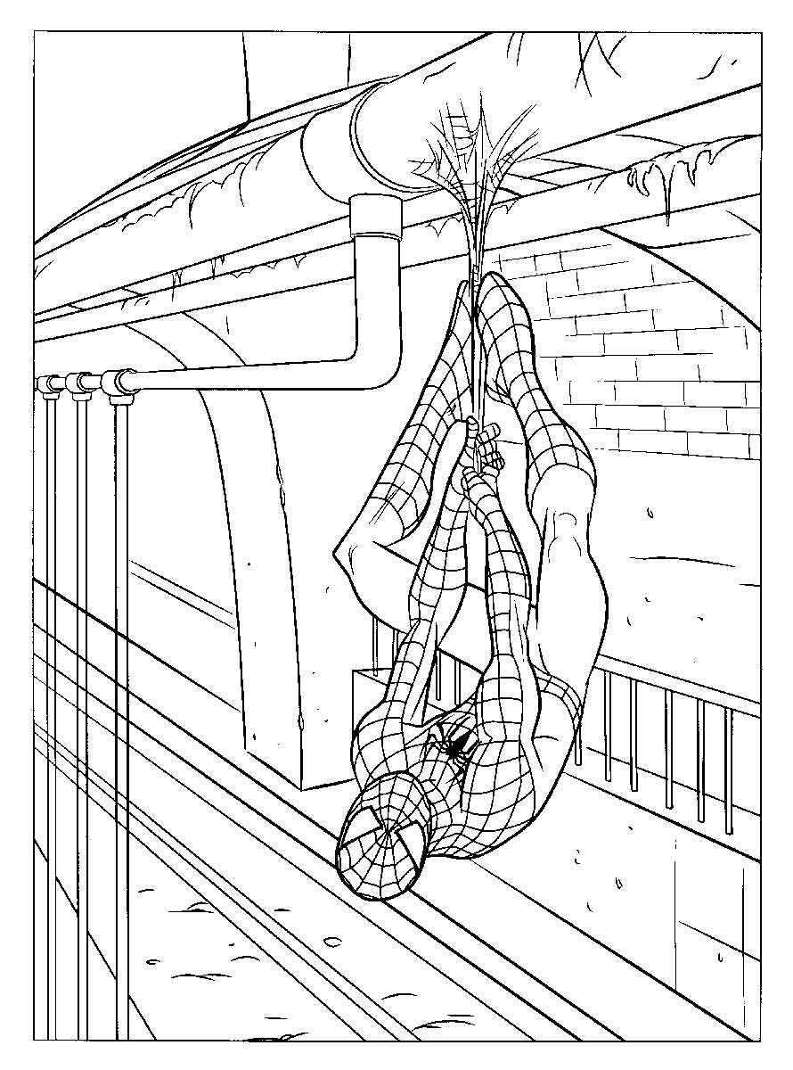 Раскраски для мальчиков Человек паук   Детские раскраски ...