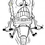 spongegub2