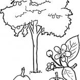 treesdown5
