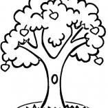 treesdown9