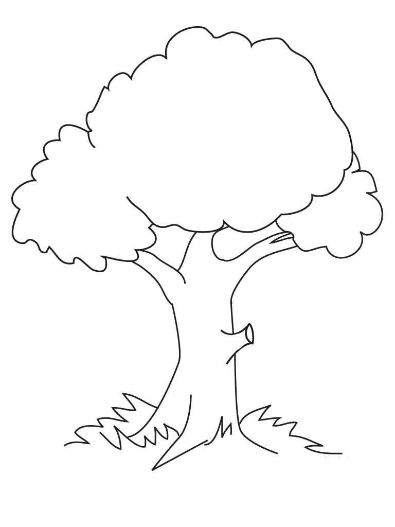 Заготовка дерево раскраска