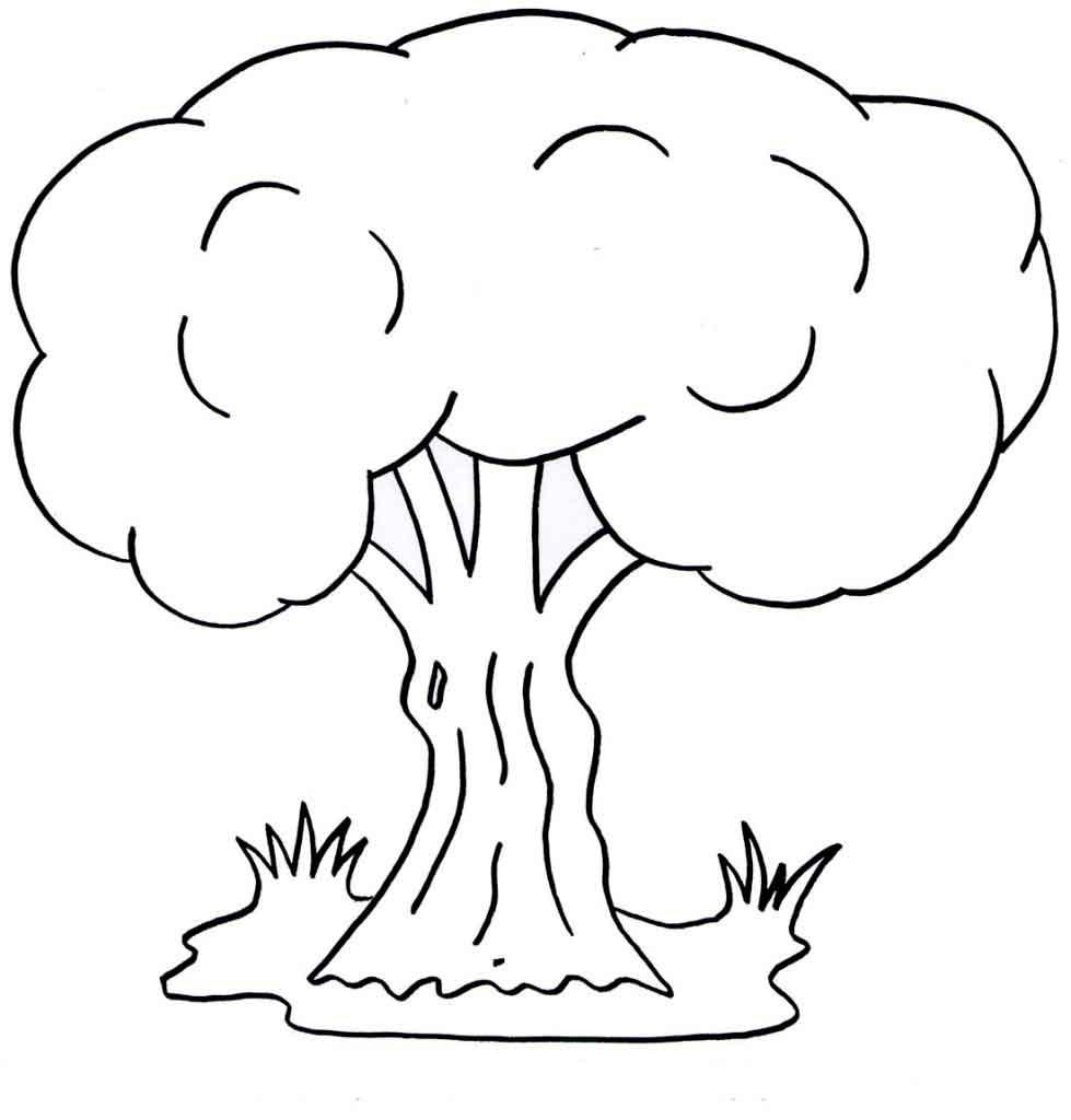 Раскраска дерево | Детские раскраски, распечатать, скачать