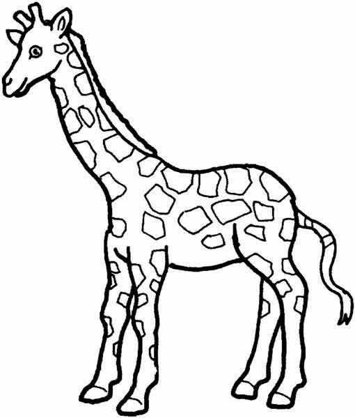 Раскраска дикие животные | Детские раскраски, распечатать ...