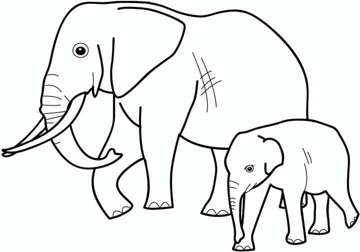 Раскраски слонов онлайн