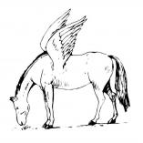 winghorse4